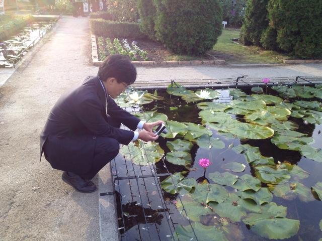 蓮の花を、撮影する長嶋議員