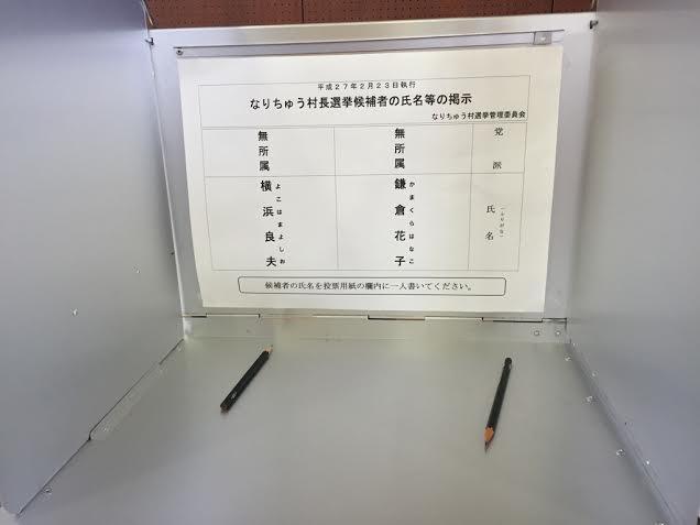 模擬選挙3